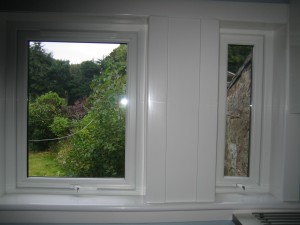 Litchen windows