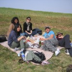 All the picnickers